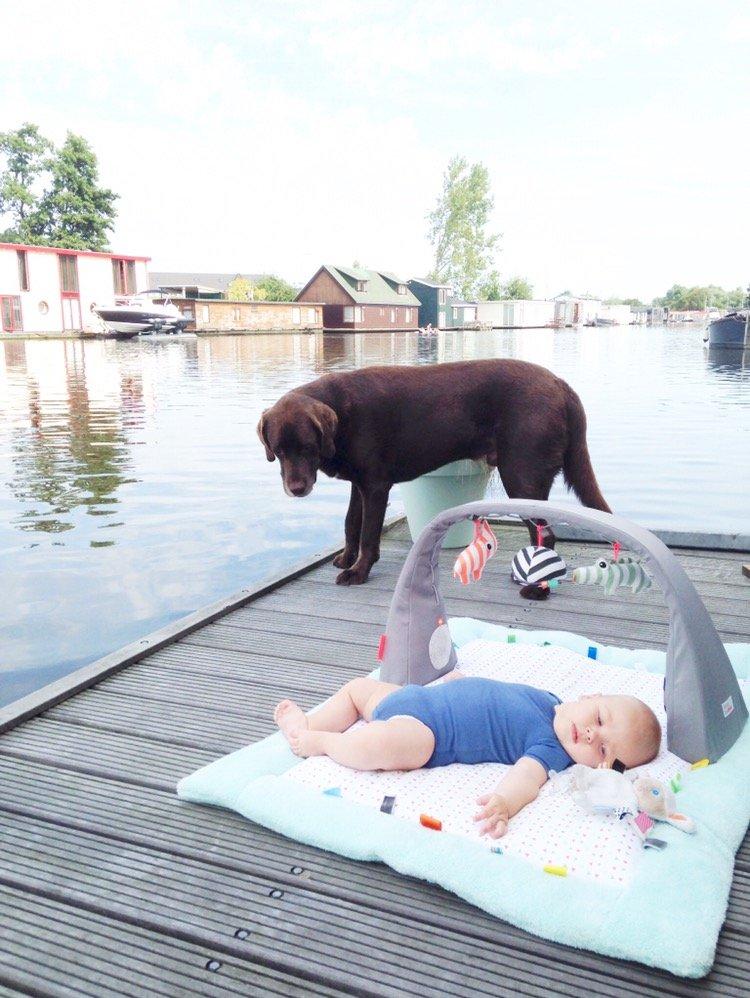 leven op woonboot amsterdam met kinderen