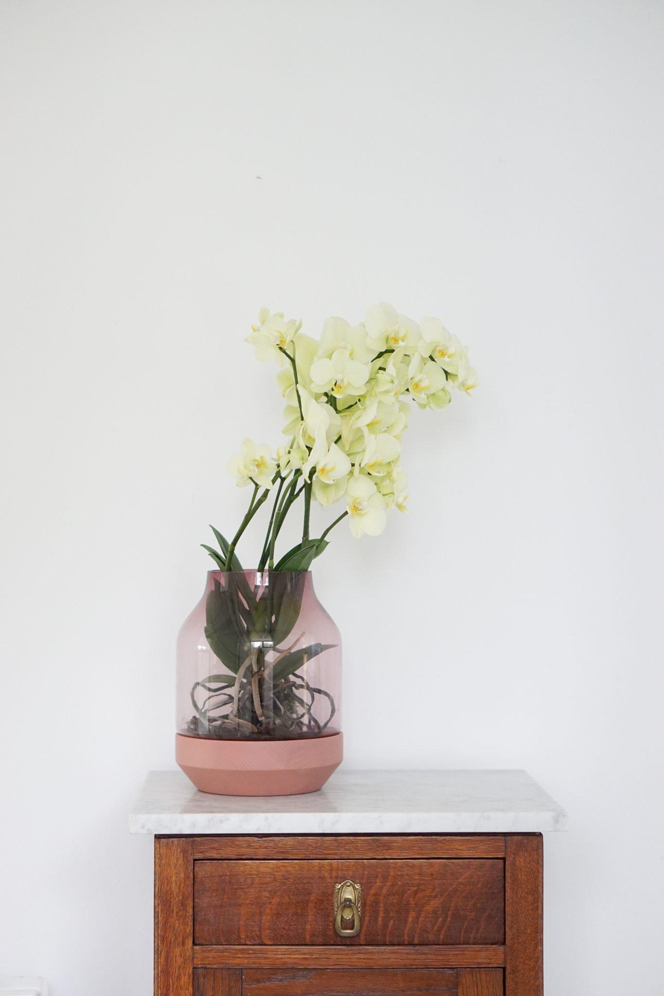 Drie manieren om de Muuto Elevated vaas in huis te stylen