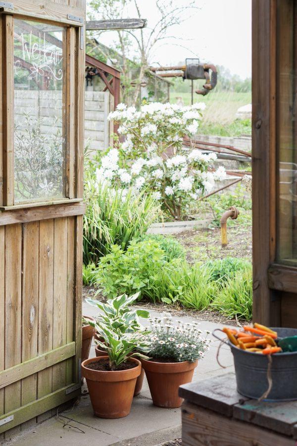 oude schuur tuin