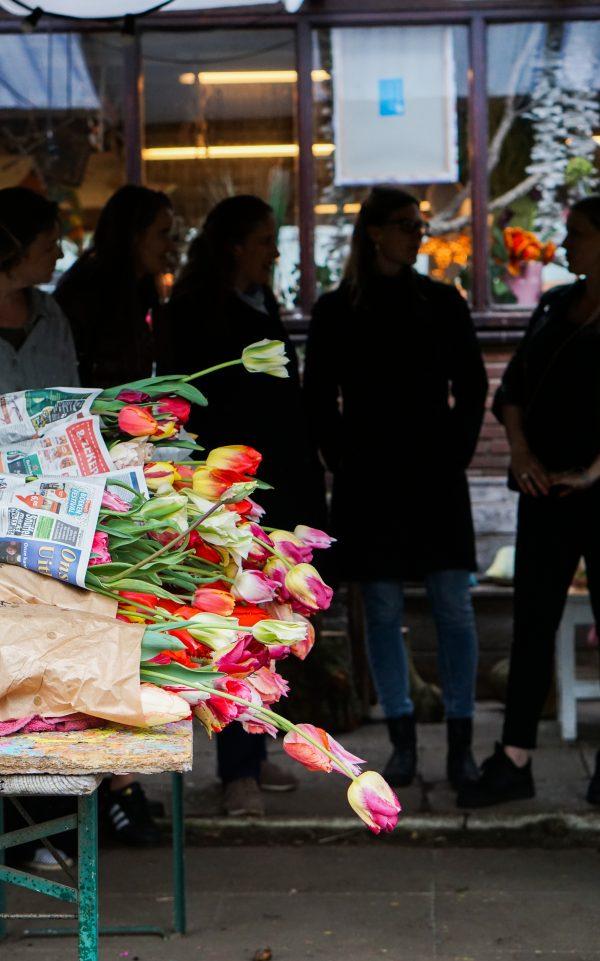 geplukte tulpen pluktuin amsterdam