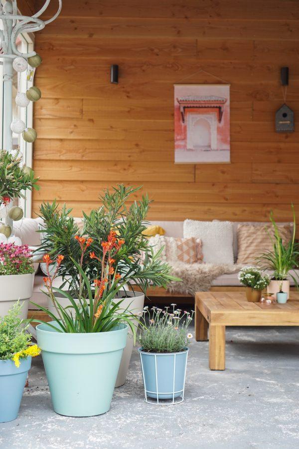 elho plantenbakken tuin