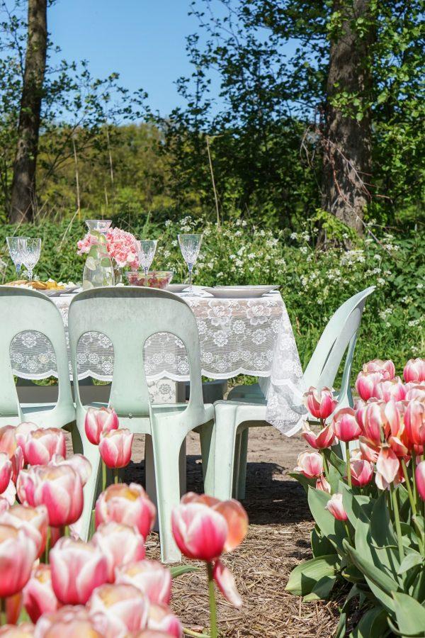 buiteneten aan tafel tulpenveld