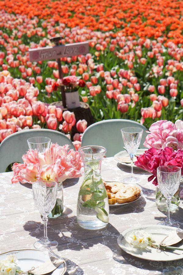 vaasjes tulpen op tafel tulpenveld lisse