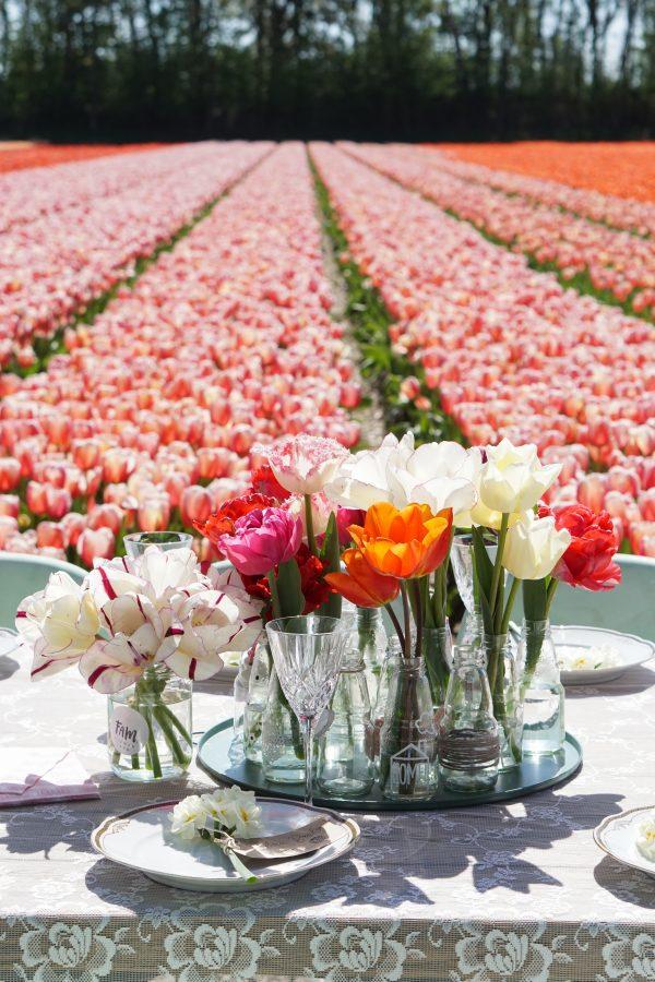 verschillende tulpen in mini vaasjes