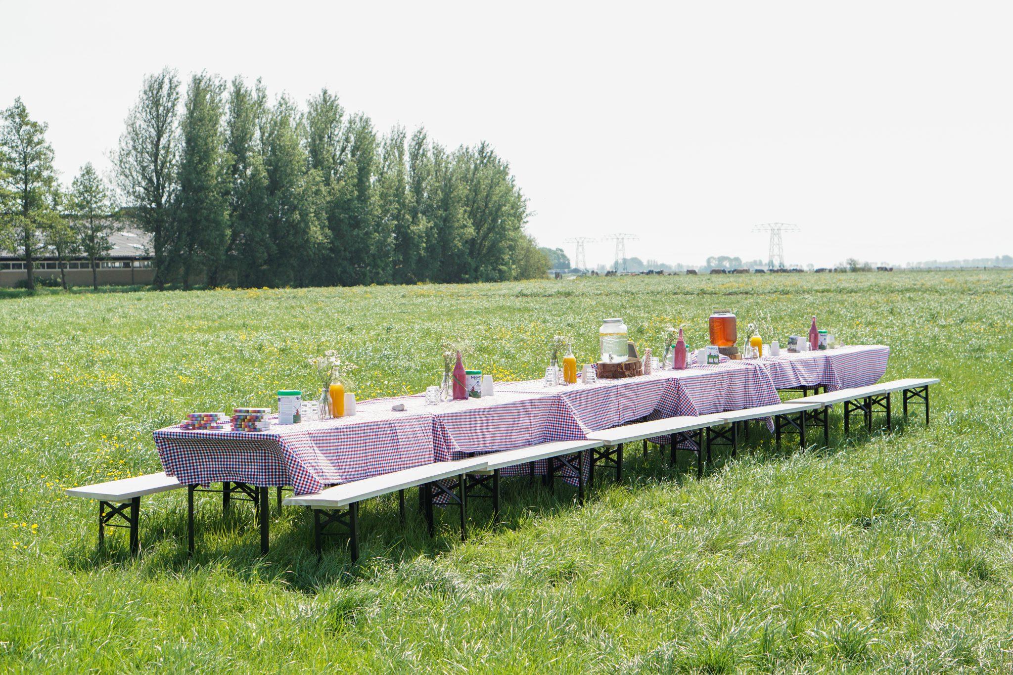boederij lunchen weiland
