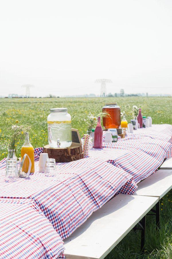 picknick in het veld
