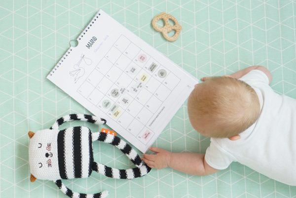 Skye mijlpalen babydagboek kalender