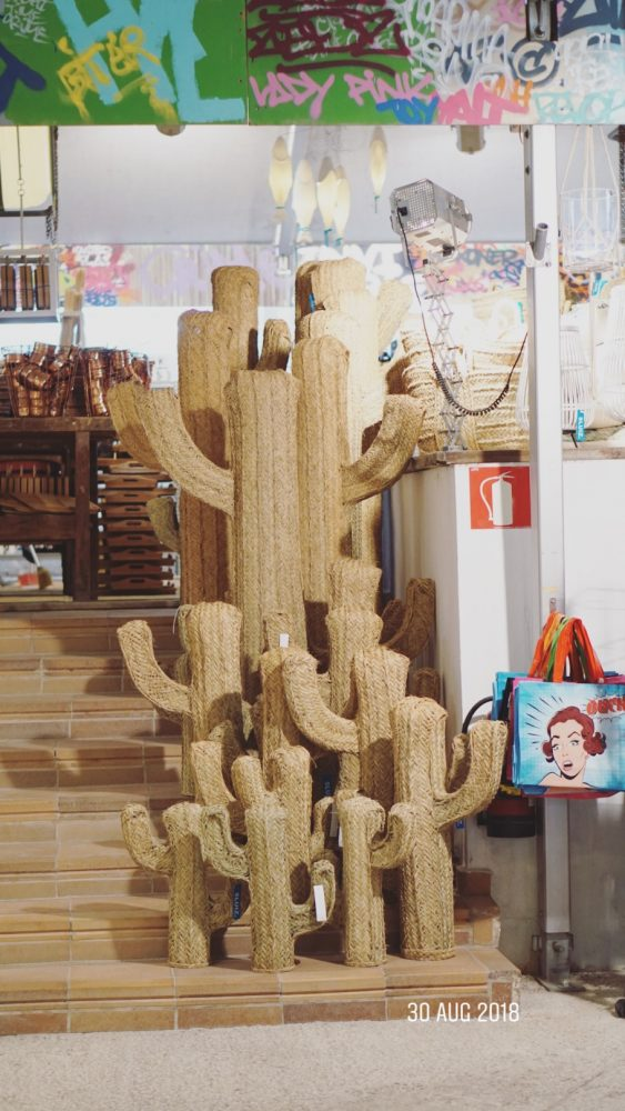 rotan cactussen sluiz ibiza woonwinkel