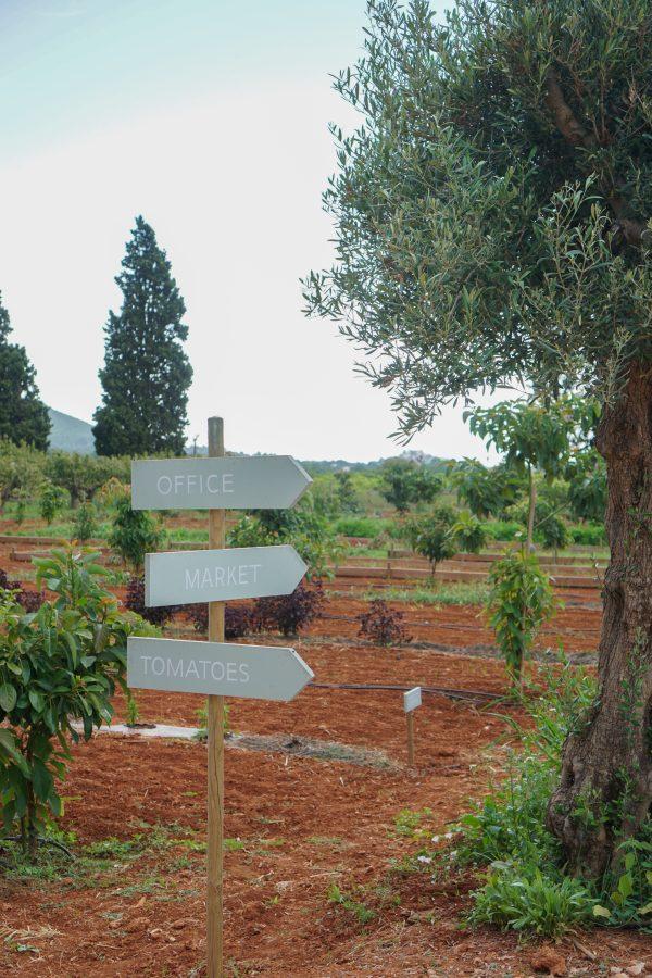 wegwijzers boerderij terra masia