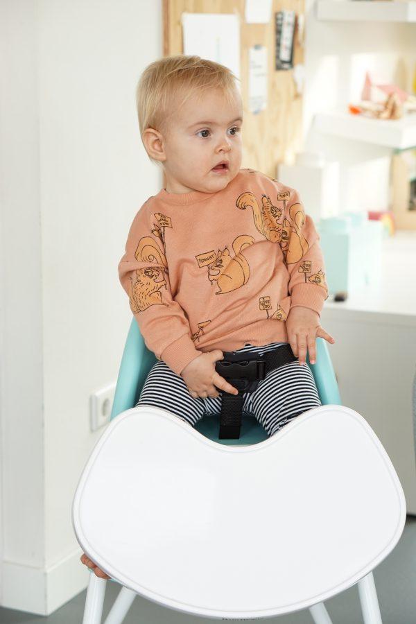 babybjorn kinderstoel niet ontsnappen