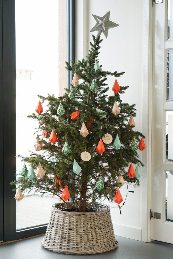 duurzame kerstboom tijdelijk kerstbomenbos