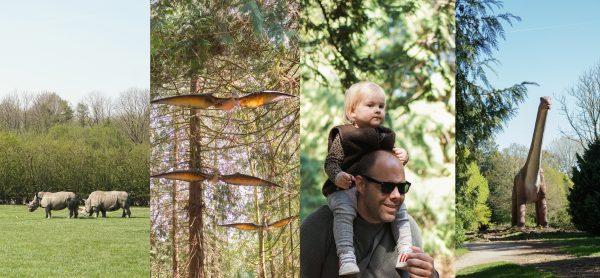 denemarken kinderen safaripark