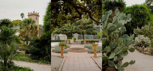 valencia jardin botanico