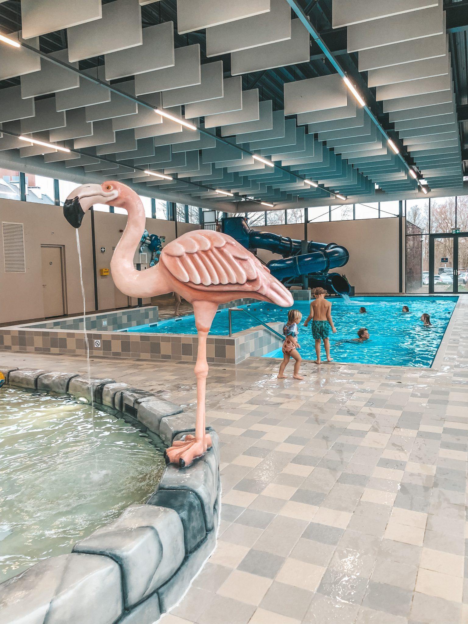 zwembad vakantiepark maastricht