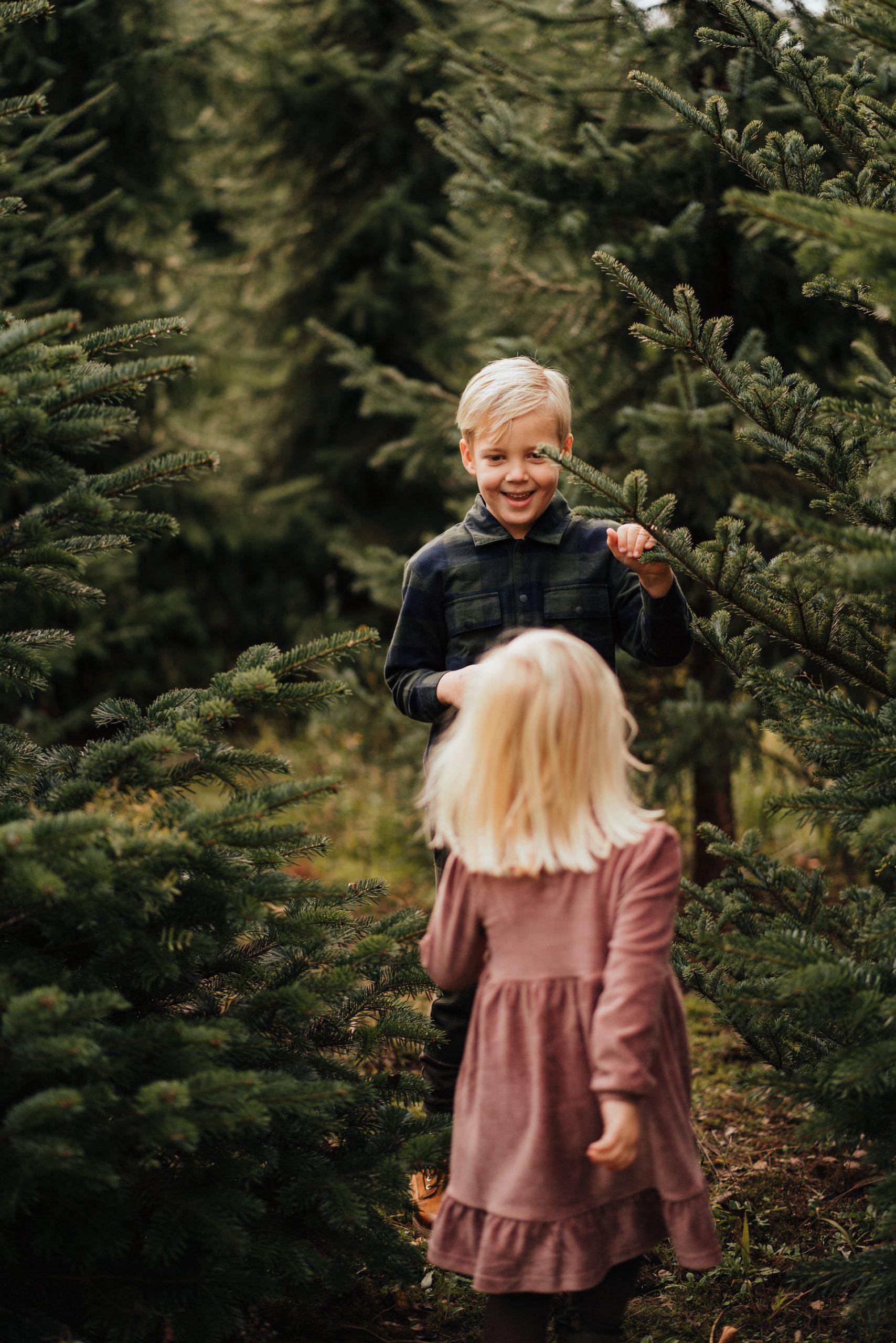 kerstbomen fotoshoot