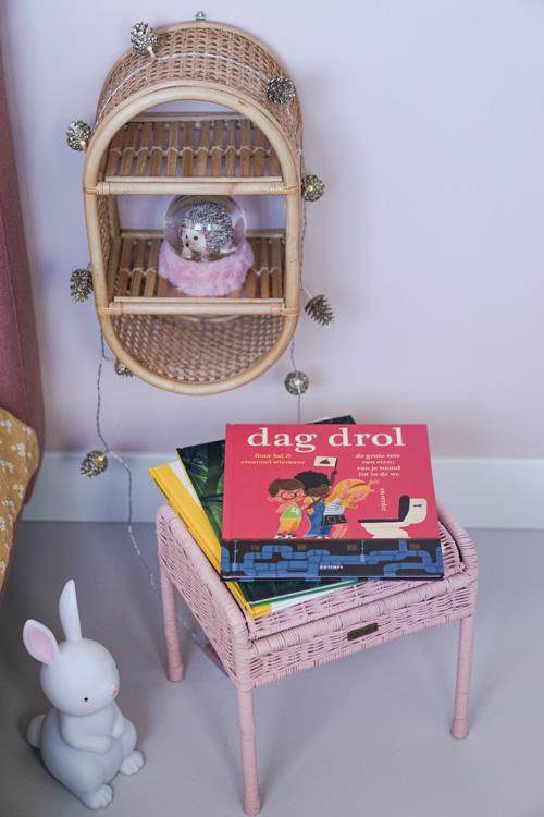 dag drol kinderboek recensie