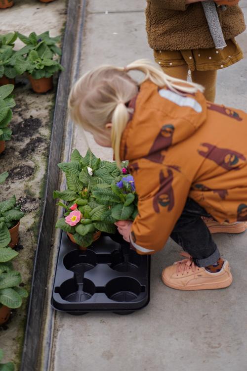 eetbare bloemen mee naar huis