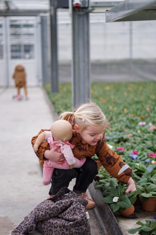 eetbare bloemen uitkiezen look & taste