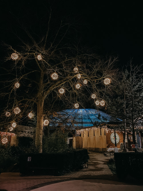 kerst vieren center parcs