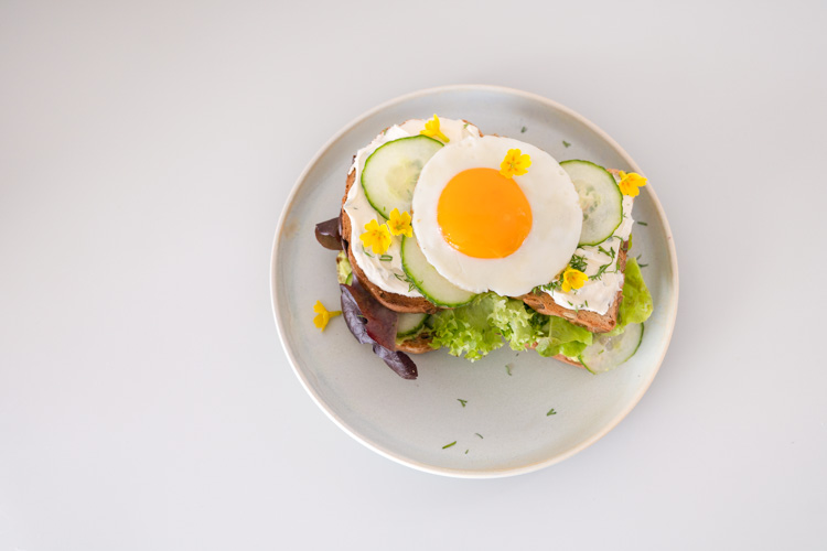 paasbrunch open sandwich ei avocado