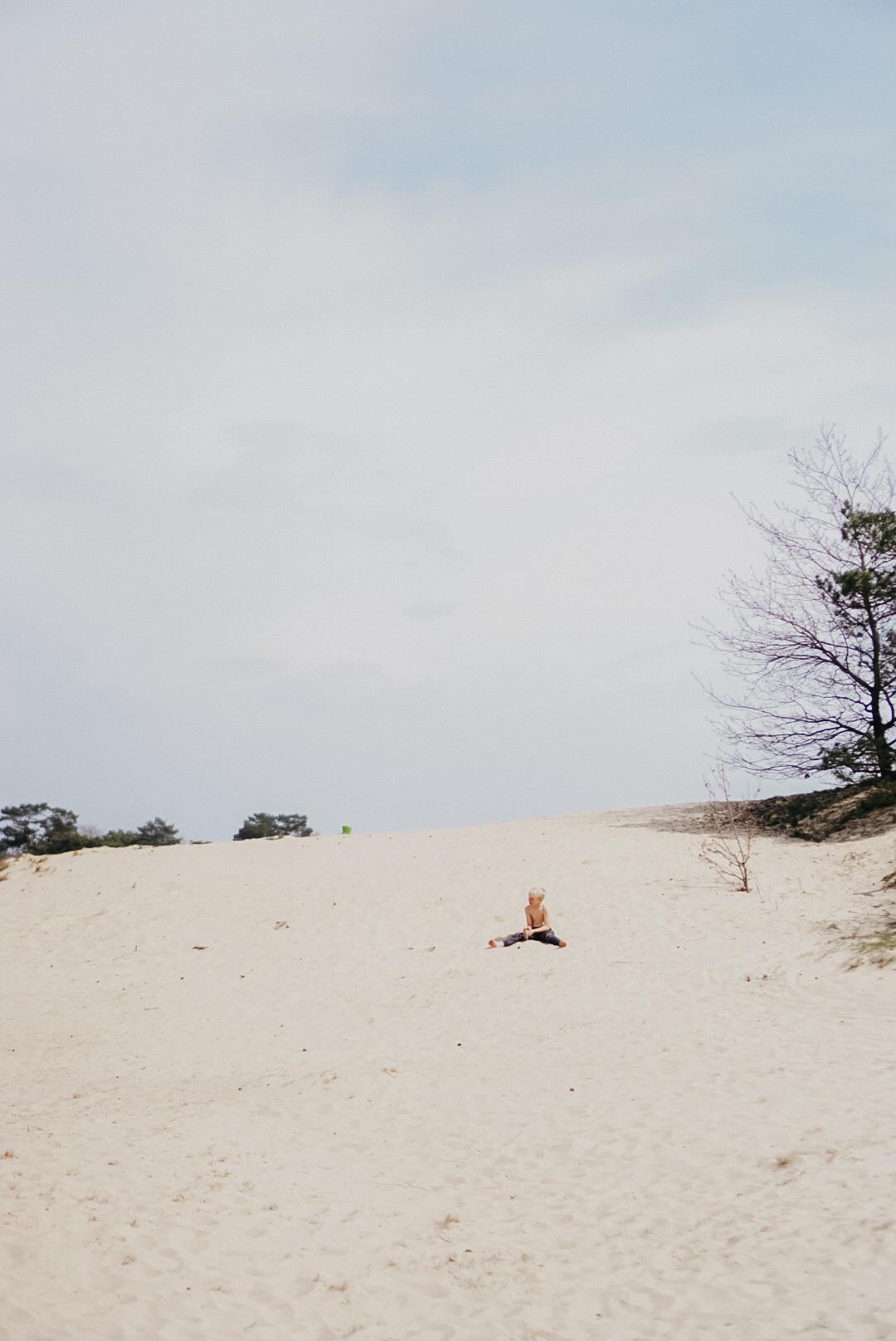 natuurgebied veluwe zandverstuiving kootwijk