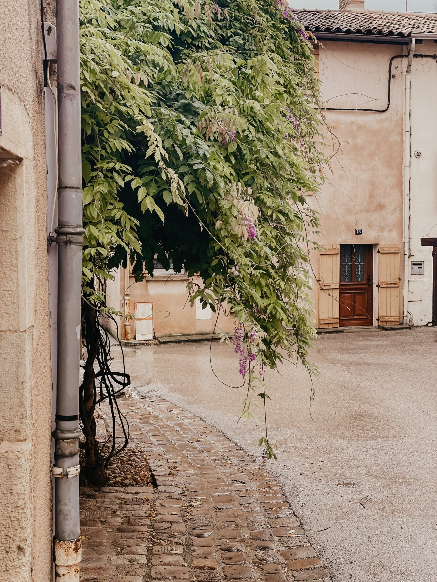 Tournus Bourgondië oude stad
