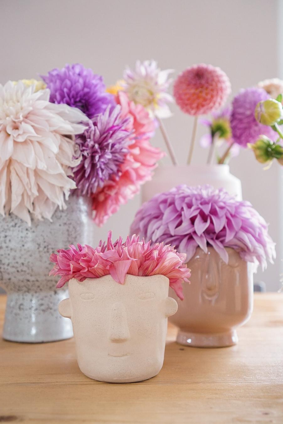 roze bloemen dahlia