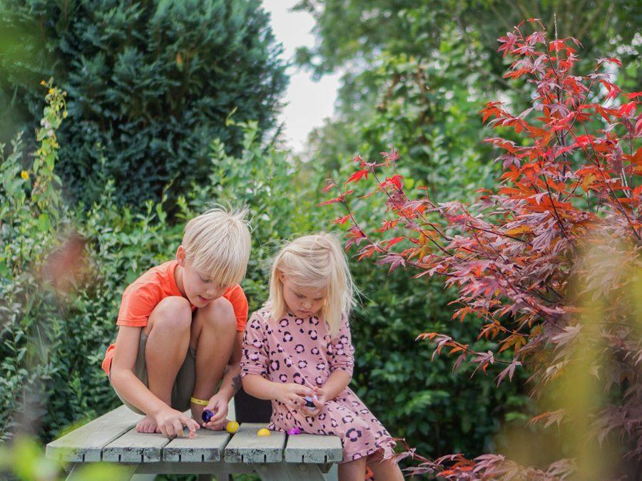 Tuininspiratie voor een kleurrijke en groene zomertuin!